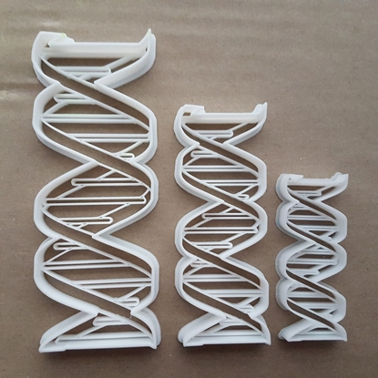 DNA Genetic Organism Human Body Shape Cookie Cutter Dough Biscuit Fondant Sharp Stencil Deoxyribonucleic Acid Medical Scientific Lab