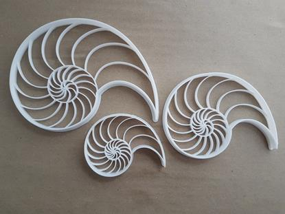 Fibonacci Shell Growth Shape Cookie Cutter Dough Biscuit Pastry Fondant Stamp Stencil Sharp Sequence Maths Science Pattern Nature
